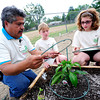InColor volunteer Gerardo Rodriguez, left, works with Lauren Brinkmann and Julia Kirk on caging pepper plants as part of a group of 4th graders from Kohl Elementary School in Broomfield planting a garden behind the school as part of Disney's Planet Challenge, an environmental and science competition for grades 3-8. May 22, 2012<br /> Photo by Paul Aiken