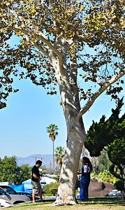 TREE OF KNOWLEDGE :)