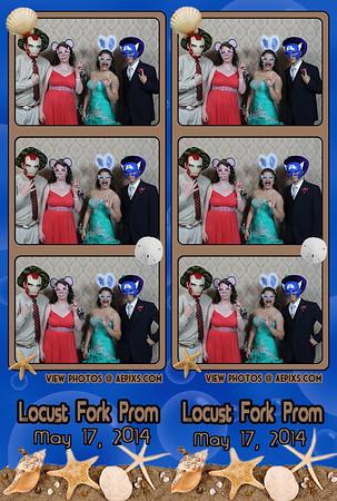 Locust Fork High  Prom 2014