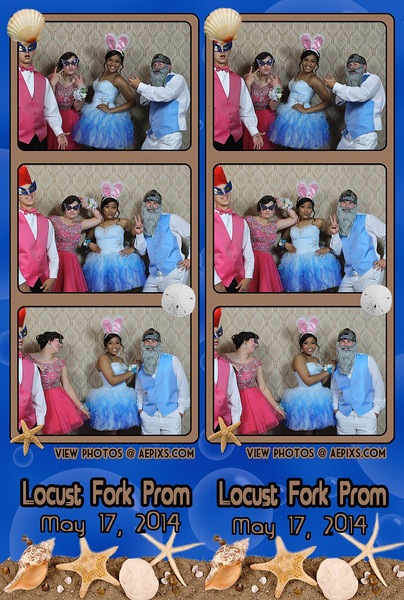 Locust Fork High School 2014