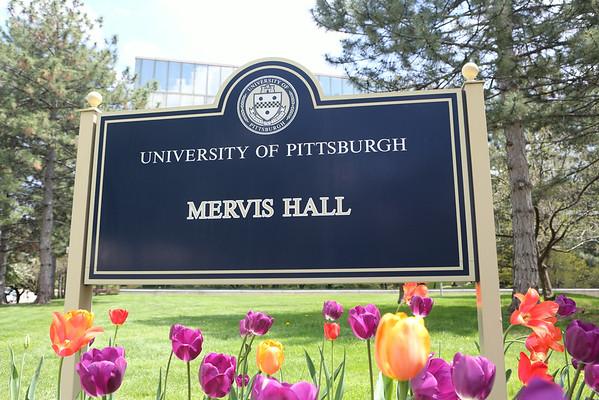 Mervis Outside Renovated 2014 - Dennis