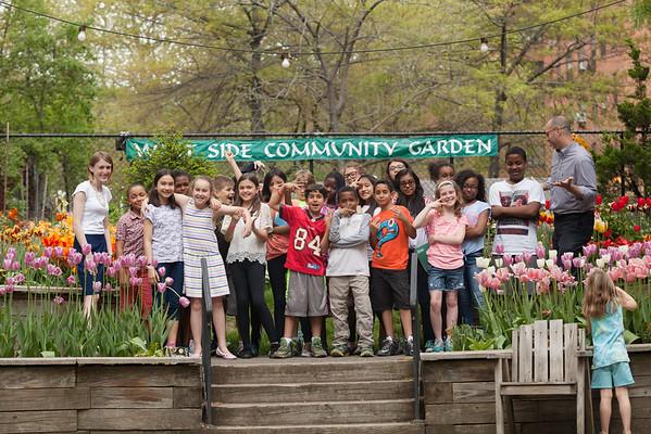 Tulip Garden Favorite may2015-6954