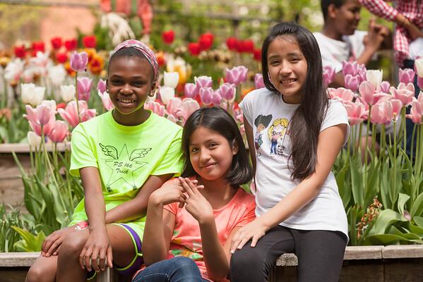 Tulip Garden Favorite may2015-7023
