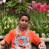 Tulip Garden Favorite may2015-7149