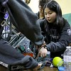 Chusing Academies robotics student Luna Wang works on the schools robot during the May 19, 2016 VEX Robotics competition at Oakmont Regional High School in Ashburnham. SENTIENL & ENTERPRISE/JOHN LOVE