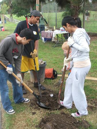 Planting Trees in Long Beach - Dec 13,2008