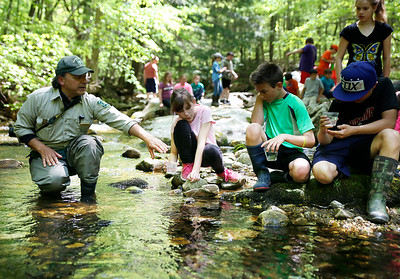Pownal Elementary school releases brook trout. 052516
