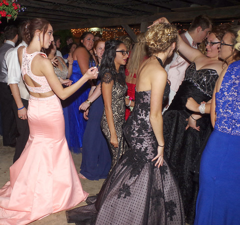 Mark Maynard | for The Herald Bulletin<br /> Dancing was the order of the night at the Elwood High School Prom on Saturday.