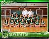 8x10-team template volleyball 2014-5 (crop)