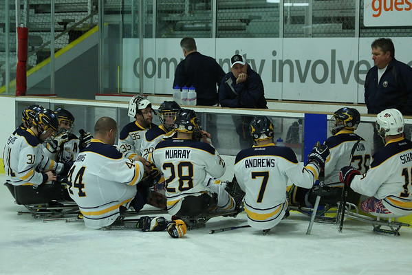 Sabres Sled Hockey 2015
