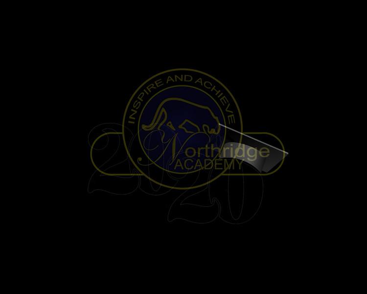NAHS Background logo