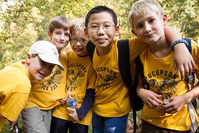 Bear scouts
