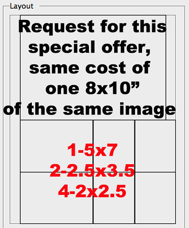 """(1)5x7 (2)2 5x3 5 (4)2x2 5""""offer"""