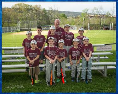 Team 3 Coach Pitch Wagoner border