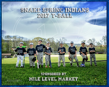 Team 4 ML Market Tball border name
