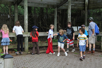 Stepping Stones - 3rd Grade Zoo trip