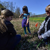 Students from Grafton Elementary School get help from high school students from Bellows Falls and Leland & Gray to plant 410 trees alongside the Saxtons River in Grafton on Wednesday, May 11. Kristopher Radder / Reformer Staff