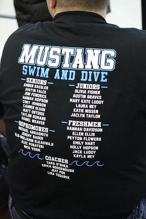 2013 MNHS Swim State Prelims