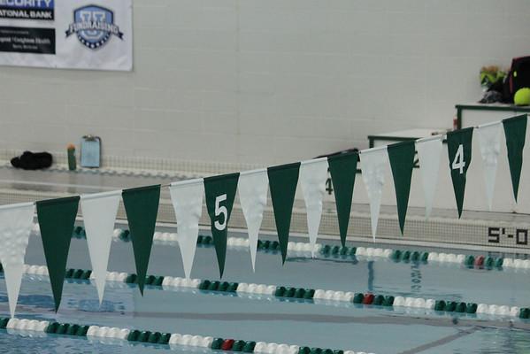 2014 MNHS Swim Boys Metro Prelim