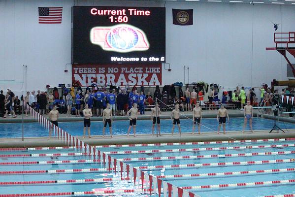 2014 MNHS Swim Boys State Prelims