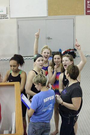 2014 MNHS Swim Metro Champs