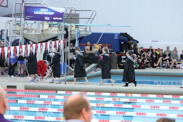2014 MNHS Swim State Finals