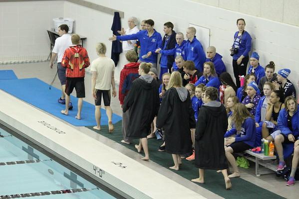 2015 MNHS Swim Metro Finals 2