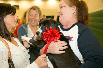 Pepper, a rescue puppy fostered by TCA mom Soraya Meyers, was auctioned twice for a total of $1375.