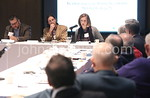 Panel Discussion of Strategic Planning Committee Chairs