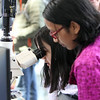 Lowell Center for Space Science and Technology at UML, and the John F. Kennedy Library Foundation celebrate the 50th anniversary of the Apollo 11 moon landing. Lowell High freshmen Rachel Sorano, left, and Vishwa Devisetti, both 14, look through a microscope at a copy of the silicon disc that went to the moon on Apollo 11, engraved with mircro-photographs of letters from world leaders. (SUN/Julia Malakie)
