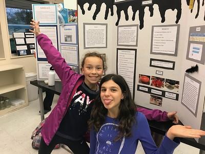WVMS Science Fair 2018