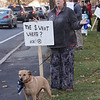 Members of Westford Education Association, the teachers' union, hold signs at Town Common to protest expected school budget cuts. Peri Schultz of Groton, digital learning specialist at Stony Brook Middle School, with her rescue dog Maya. (SUN/Julia Malakie)