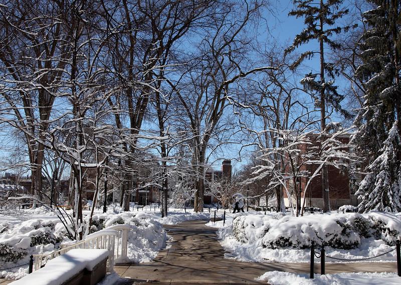 Campus scene after a heavy sticky snow in March. Penn State University, University Park.