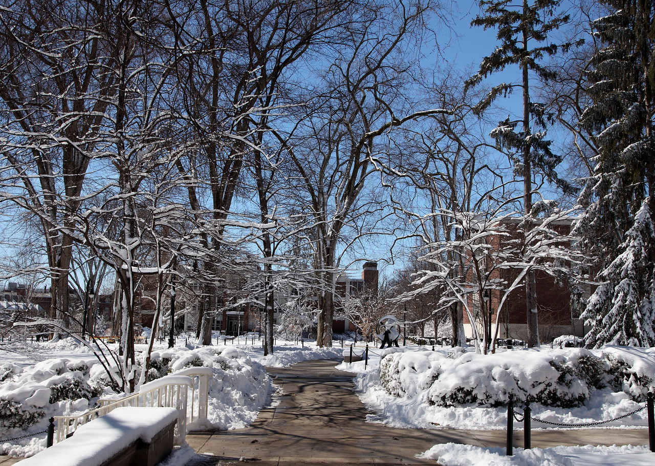 Campus scene after a heavy sticky snow in March. Penn State University, University Park.