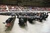 5_graduation_49447