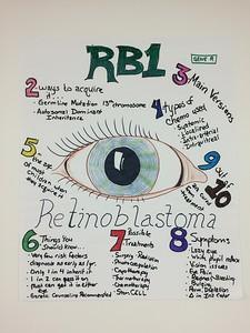 BLAST Lab Poster Product