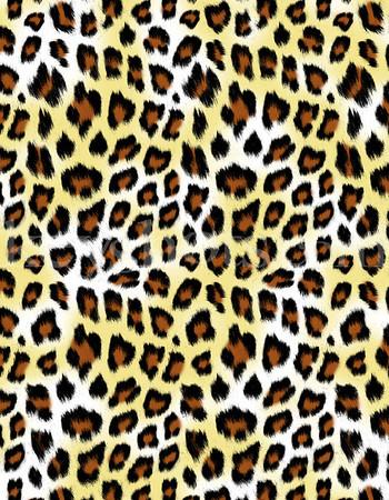 8 5x11 - Cheeta 5
