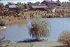 Pond at Black Creek Pioneer Village Fall 1972. Note York University buildings in background. Tray 4 slide 2