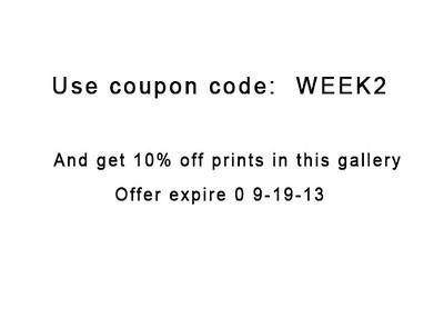 couponcode1