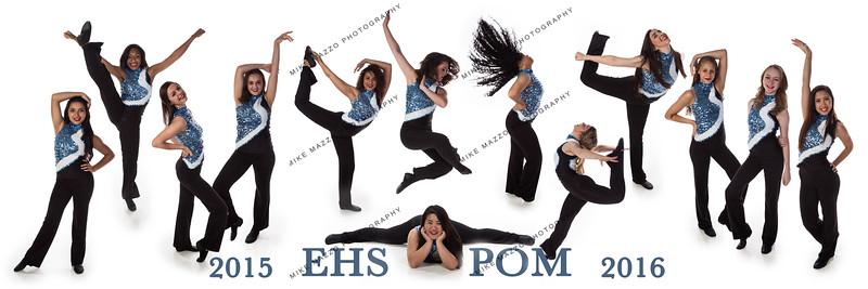 EHS Pom