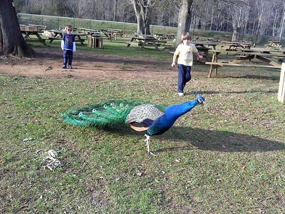 Noahs Ark Animal Center Feb 2012