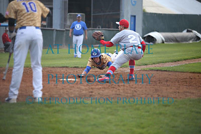 Baseball Carp