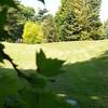olivia buiten 4