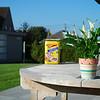 Thuiswerk 1 - Foto 2 - Vw 1 scherp