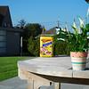 Thuiswerk 1 - Foto 3 - Vw 2 scherp