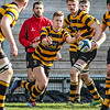Royal School Armagh 29 RBAI 22, Schools Cup SF, Tuesday 3rd March 2020
