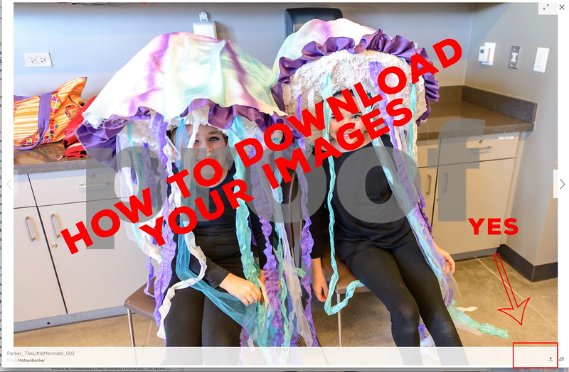 Correct Way to download Images! Yeah!