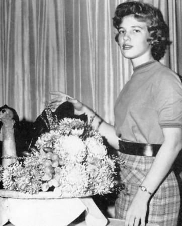 Calendar Girls 1959-1969