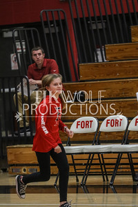 Fort girls vs  Westbend-14