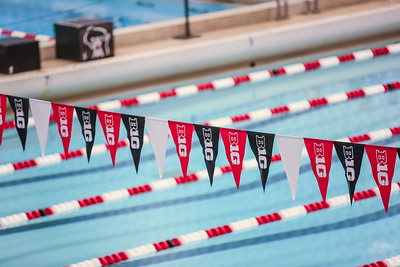 State Girls Swim